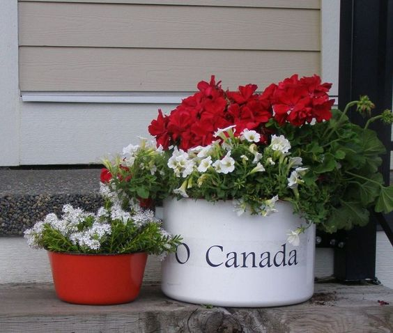 Tips to prepare for Canada Day BBQs