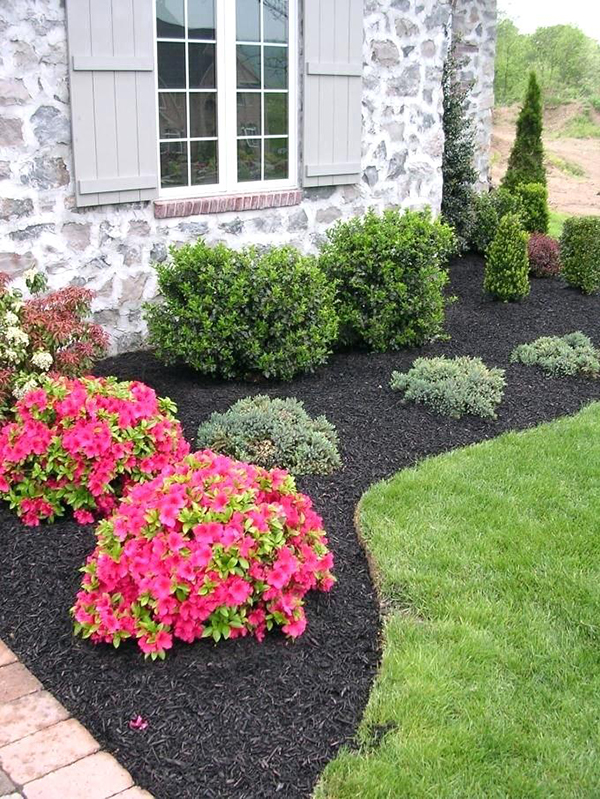 Cheap Landscaping Ideas with Mulch