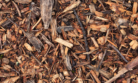 Soil, Bark & Mulch
