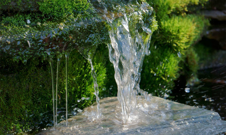 {Water Features & Supplies}